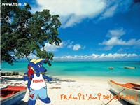 Fond d'écran Frami aux Antilles