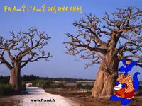 Fond d'écran Frami au Sénégal